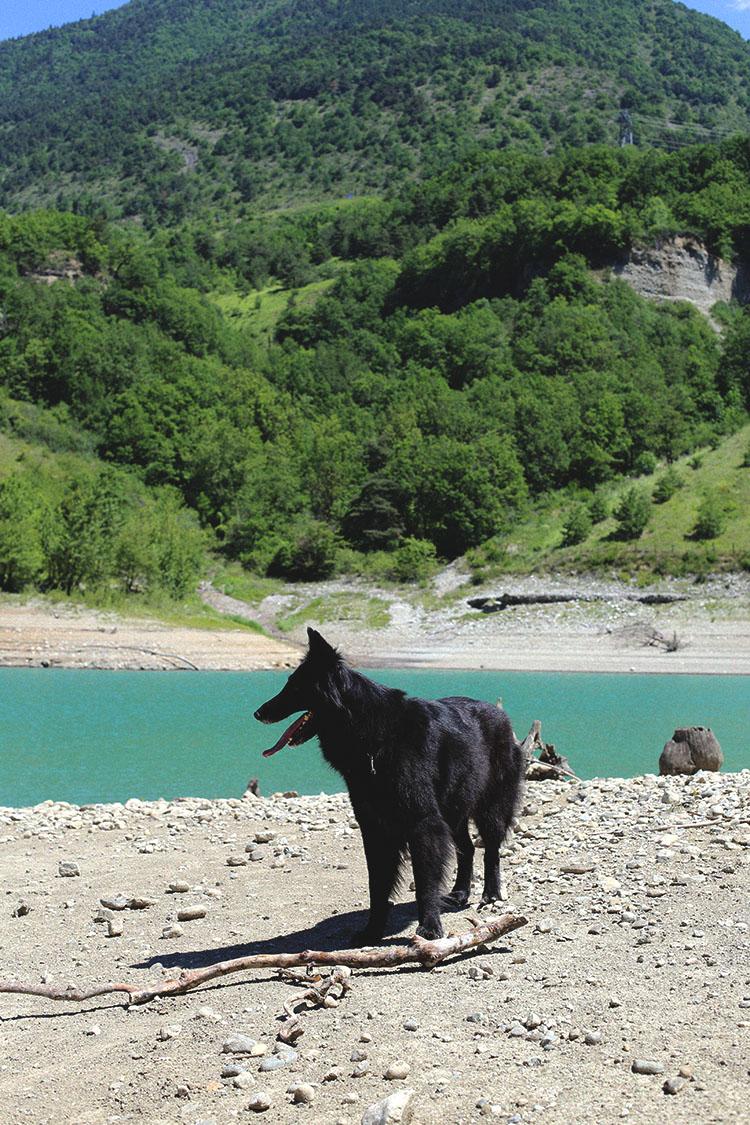 Lady-Biche-lac-monteynard-8