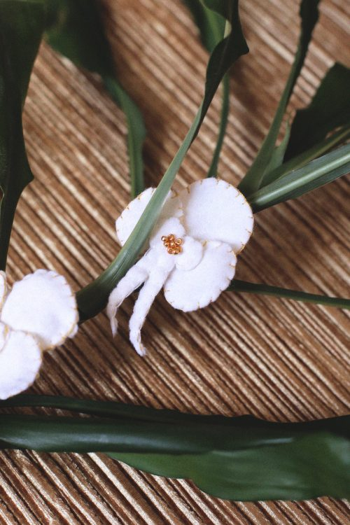 Lady-Biche-feutrine-Orchidee-blanche-1