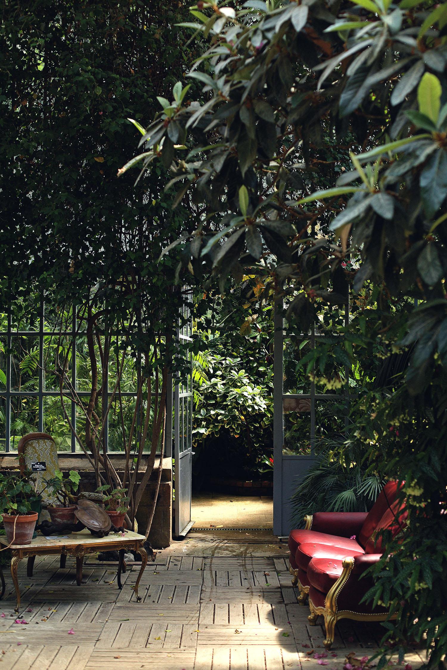 Lady-Biche-Blog-Botanique-Metz-13