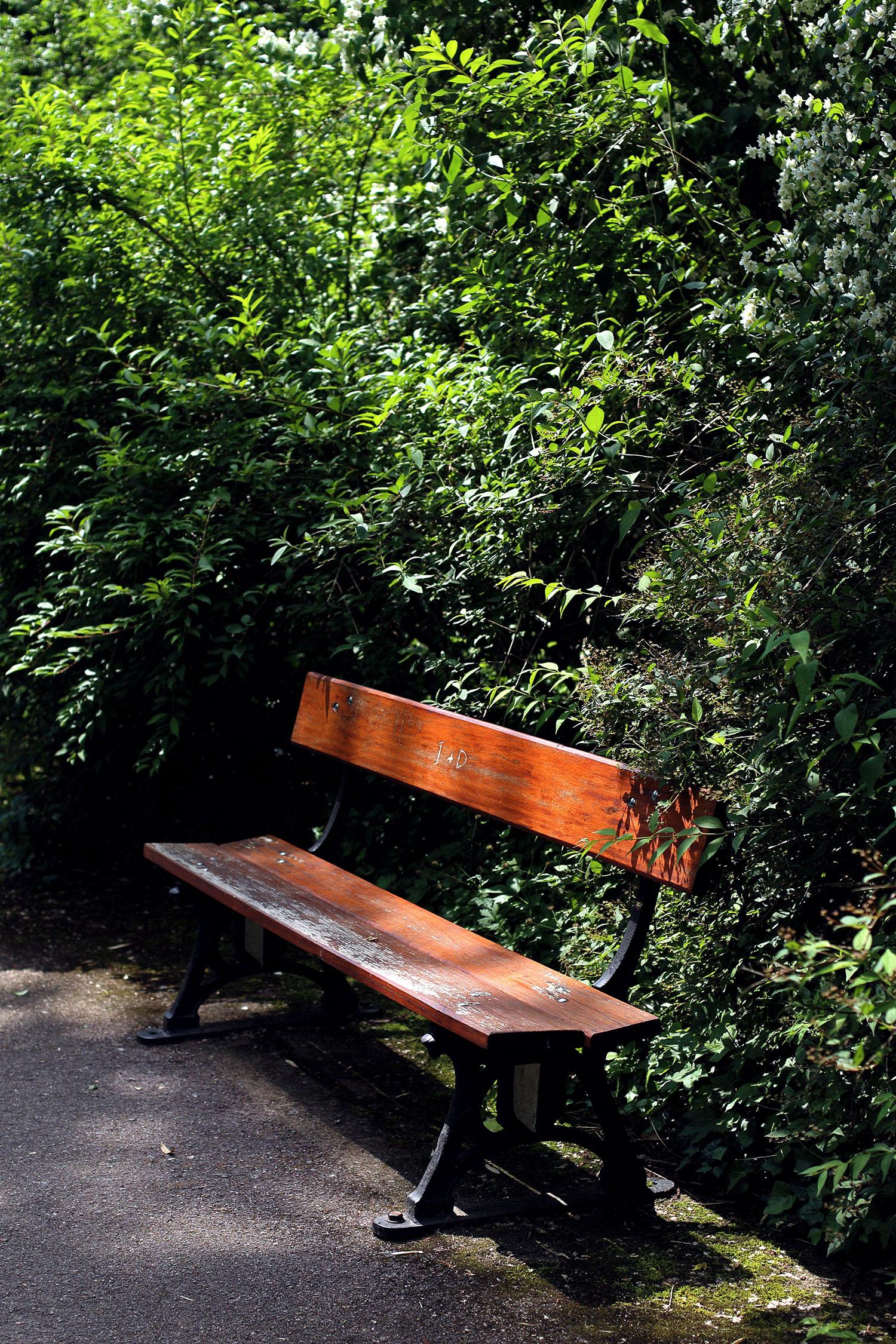 Lady-Biche-Blog-Botanique-Metz-16