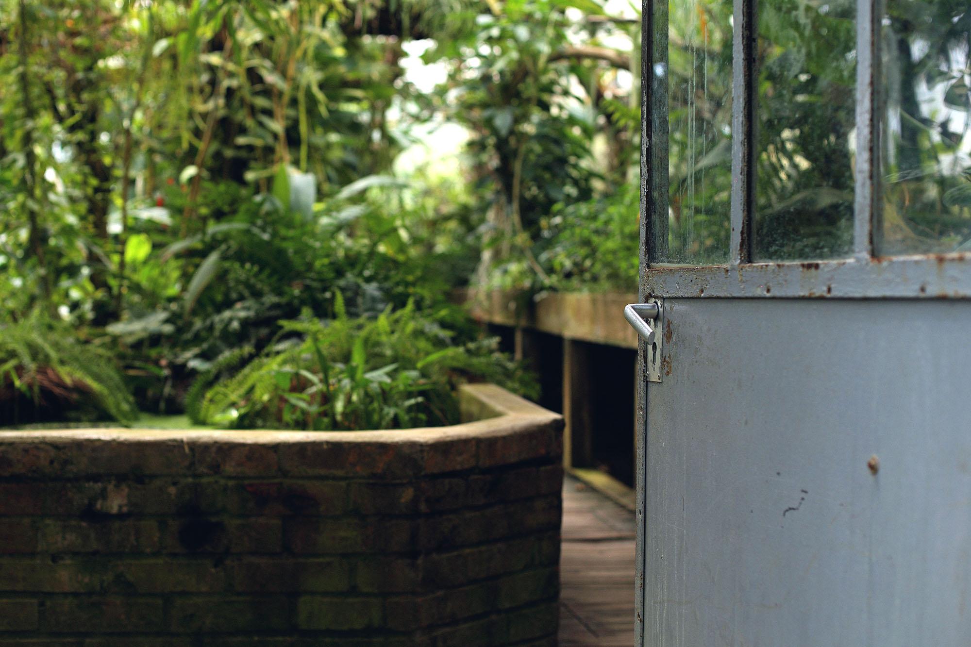 Lady-Biche-Blog-Botanique-Metz-4