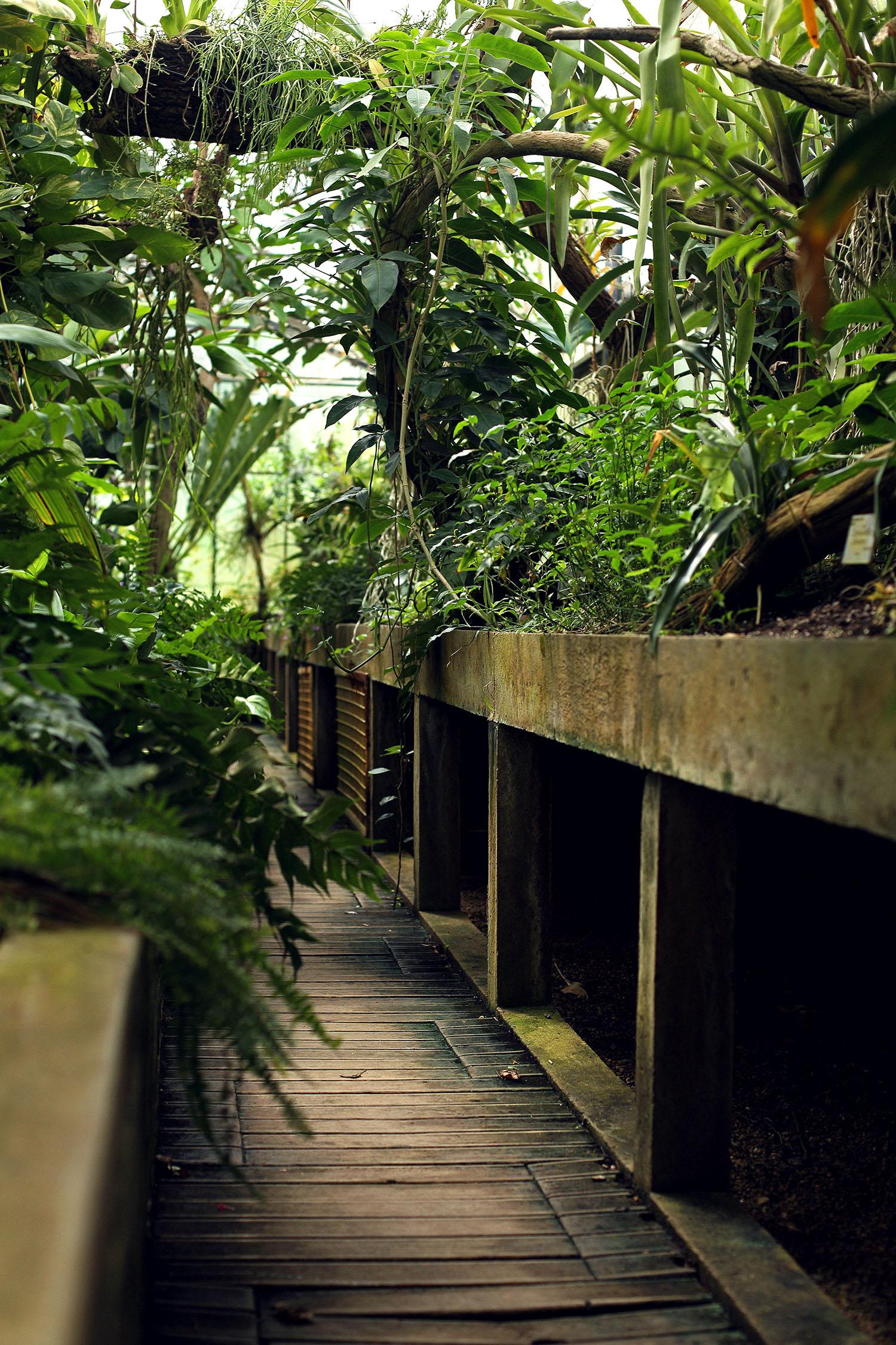 Lady-Biche-Blog-Botanique-Metz-5