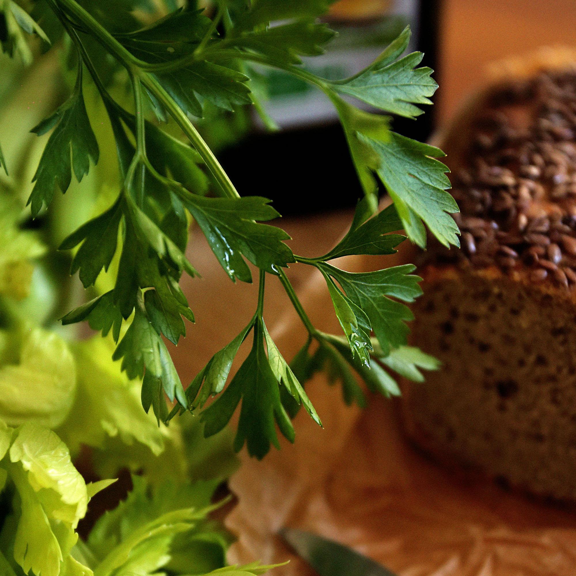 Lady-biche-blog-recette-celeri-13